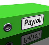 Payroll Tax Representation